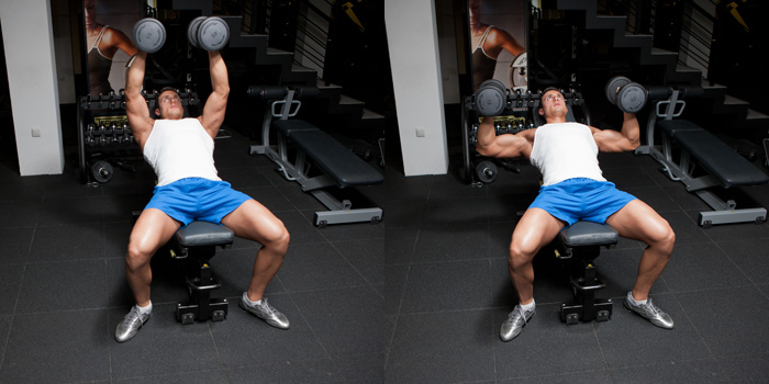 hammer grip incline dumbbell bench press weight training exercises