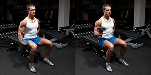 One Arm Seated Dumbbell Hammer Curl