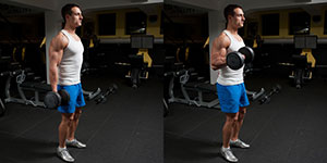 One Arm Standing Dumbbell Biceps Curl