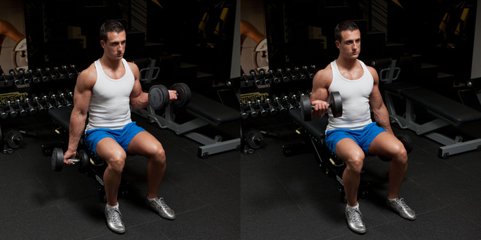 Seated-Alternating-Dumbbell-Biceps-Curl