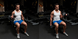 Seated Alternating Dumbbell Curl With Twist