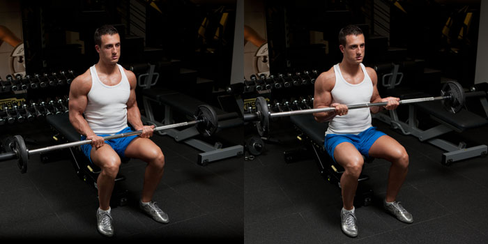 Seated-Barbell-Curl