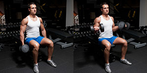 Seated Dumbbell Biceps Curl With Twist