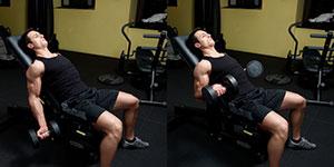 Latissimus Dorsi Workouts Using Dumbbells Training Programs